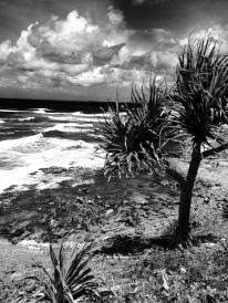 Marcoola, Sunshine Coast, Queensland, Australia